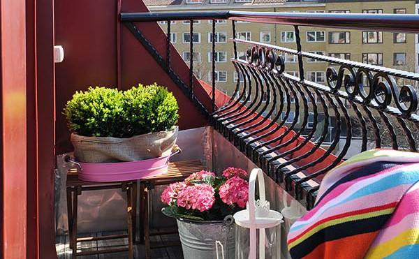 Verde e fiori in mansarda for Fiori per balconi soleggiati