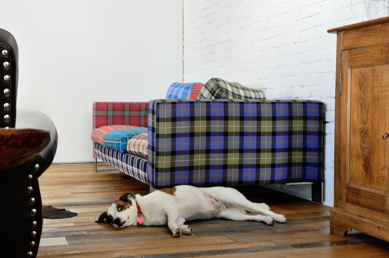 divano del salotto
