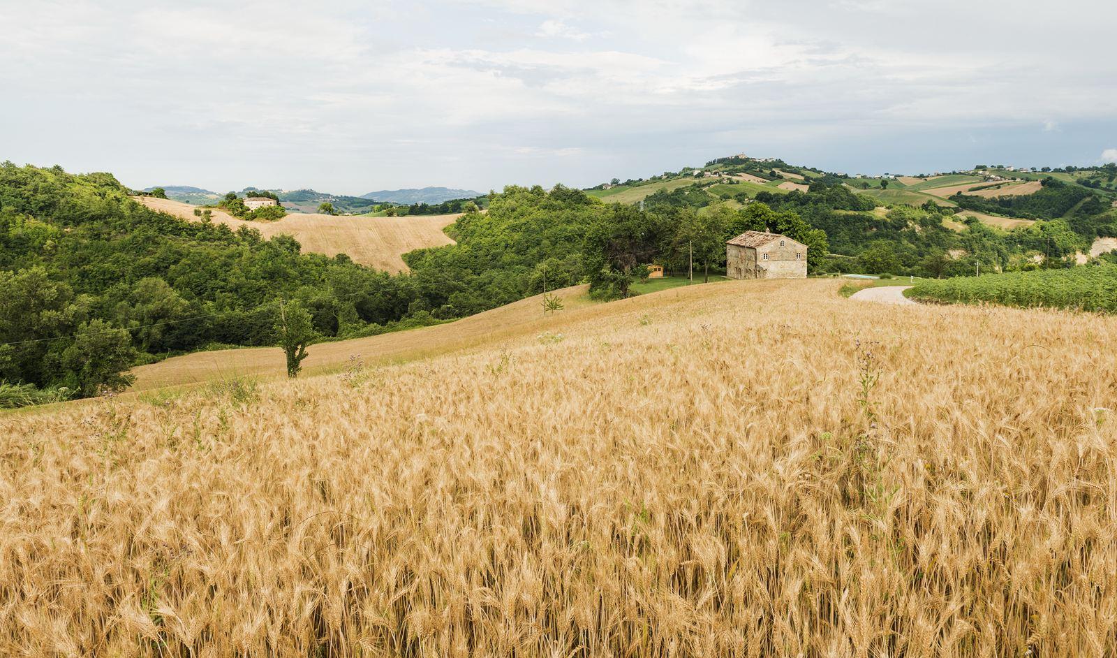 Il restauro conservativo di una villa di campagna for Esterno di mattoni di campagna francese