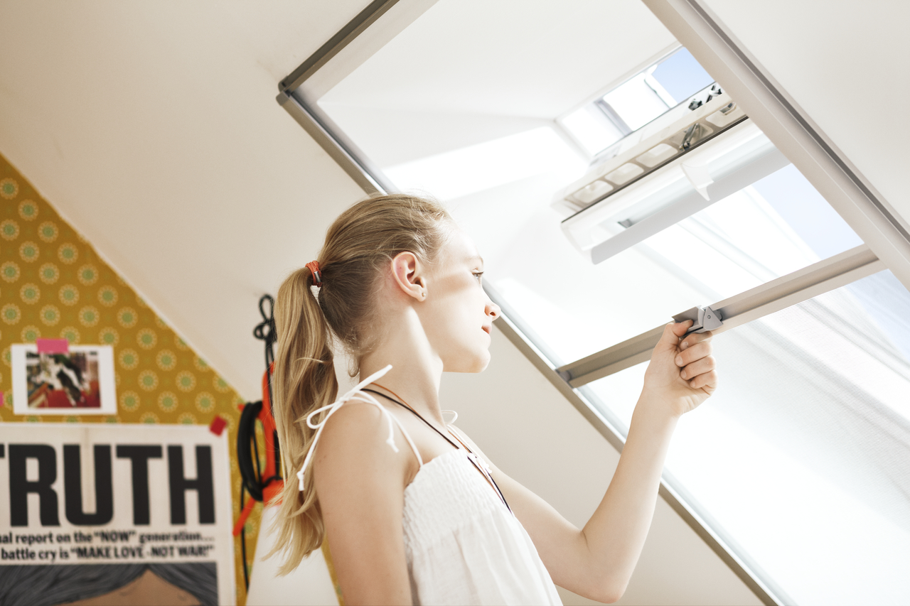 Zanzariera per finestra per tetti