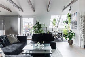 salotto con finestre per teti