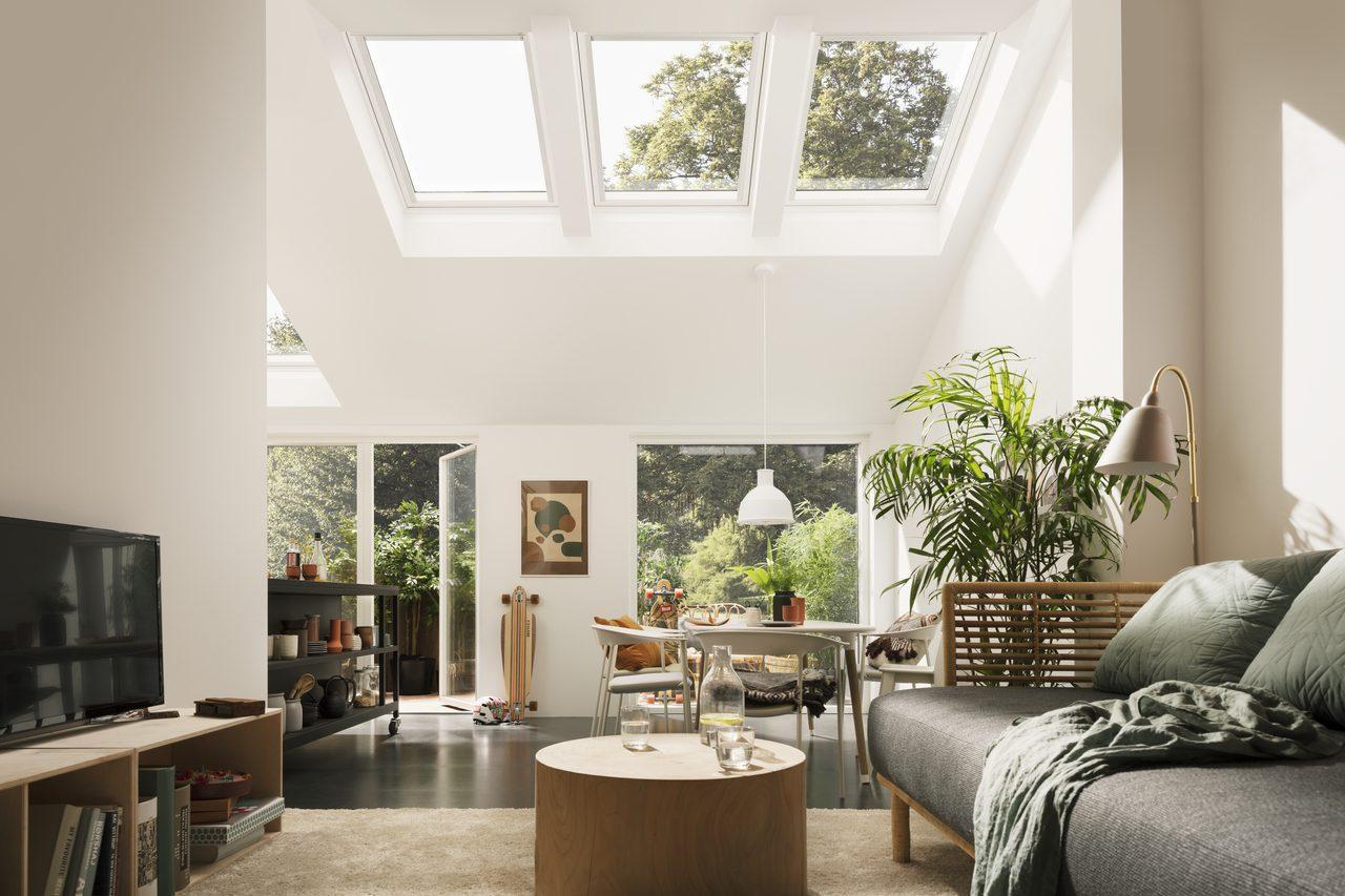 luce e piante in soggiorno
