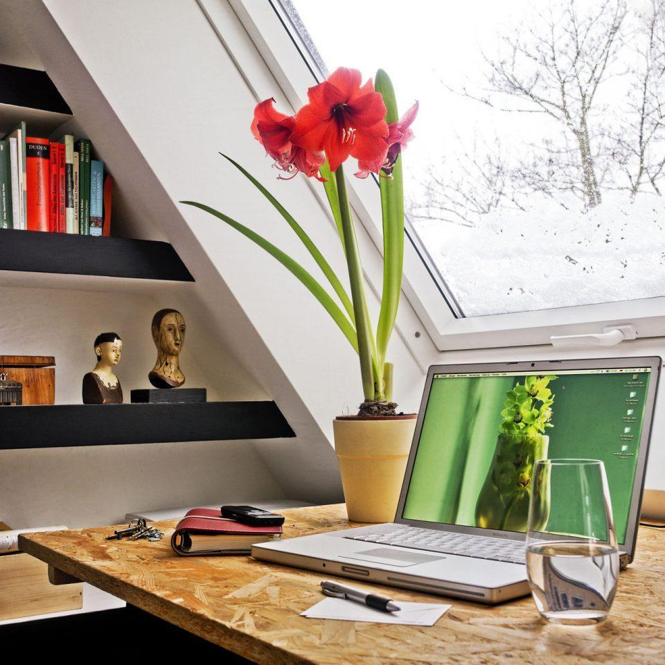 studio vista
