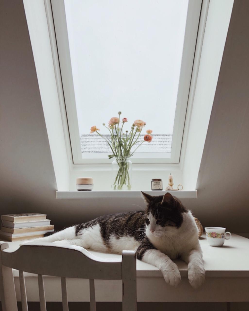 inverno finestra