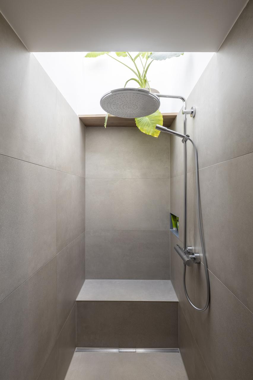 doccia pianta