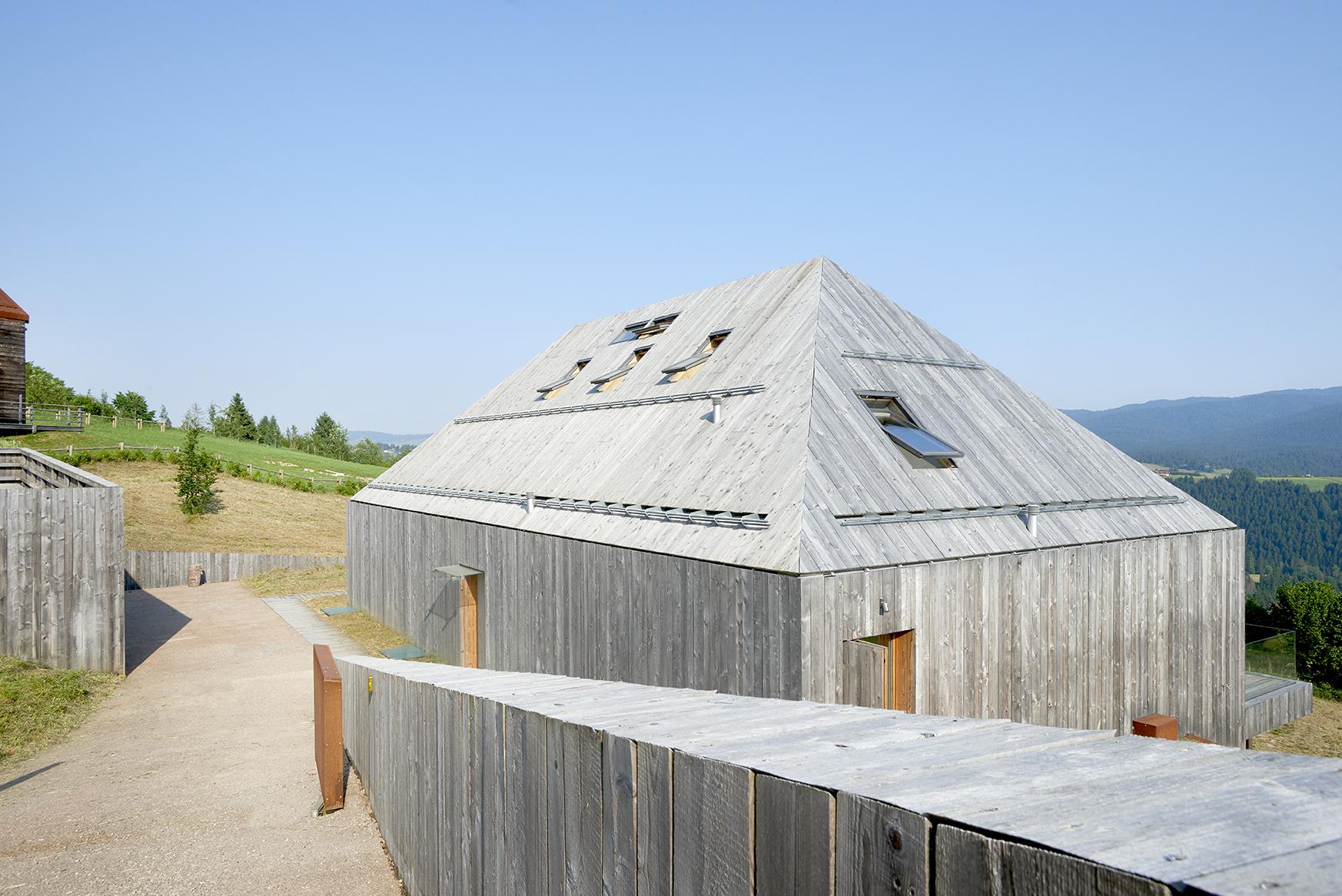 tetto con finestre